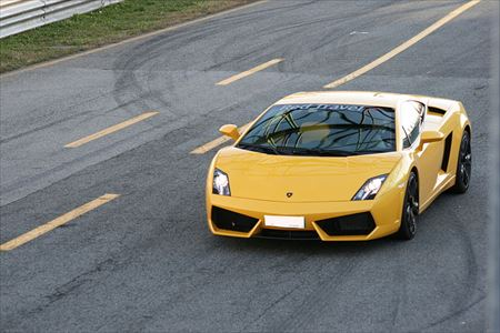 Gallardo  : /images/car/74.jpg